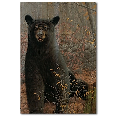 WGI GALLERY Stonewall Bear by Michael Sieve Painting Print Plaque in Black; 24'' H x 16'' W x 1'' D