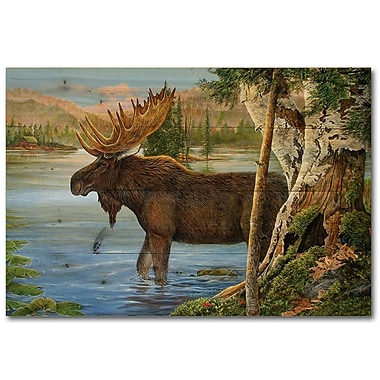 WGI GALLERY Majestic Moose by Carol Decker Painting Print Plaque; 16'' H x 24'' W x 1'' D
