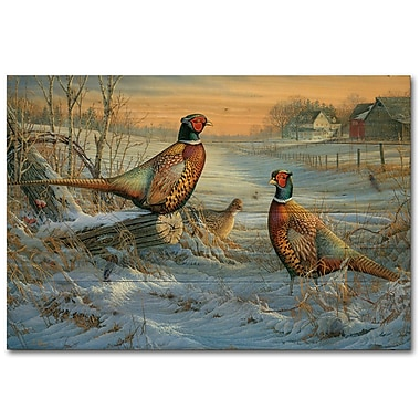 WGI GALLERY Winter Colors by Sam Timm Painting Print Plaque; 16'' H x 24'' W x 1'' D
