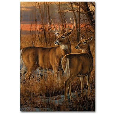WGI GALLERY Day Break by Rosemary Millette Painting Print Plaque; 36'' H x 24'' W x 1'' D
