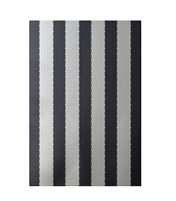 E By Design Stripe White Indoor/Outdoor Area Rug; Rectangle 2' x 3'