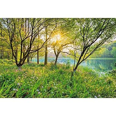 Komar – Mural Spring Lake, 100 po x 145 po