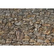 "Komar Stone Wall Wall Mural, 100"" x 145"""