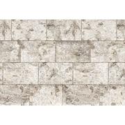 Komar – Birch Stone, murale de 100 x 145 po