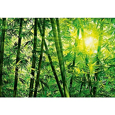 Ideal Decor Bamboo Forest Wall Mural, 100