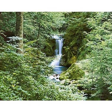 Ideal Decor – Mural Waterfall in Spring, 100 po x 144 po
