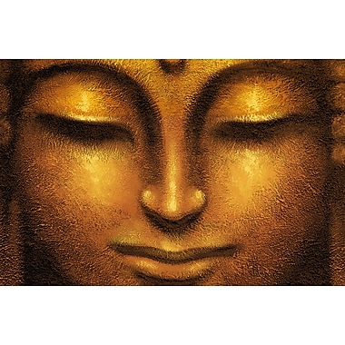 Ideal Decor Siddhartha Wall Mural, 69