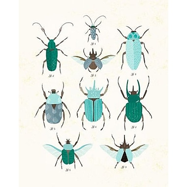 Beetle Study by Small Talk Studio Framed Graphic Art Painting Print on Wrapped Canvas in Blue