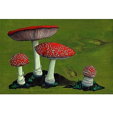 GreenBox Art 'Amanita Mushroom Family' by Kate Halpin Graphic Art on Wrapped Canvas