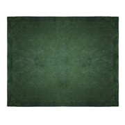 Terry Town Micro Mink Sherpa Throw; Forest