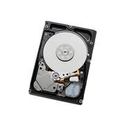"""HGST Hgst - Single 600 GB 2.5"""" SFF Hard Drive"""