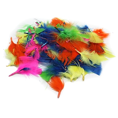 Charles Leonard Creative Arts Turkey Feathers, Hot Colour, 12/Pack (CHL63030)