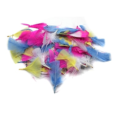 Charles Leonard Creative Arts Turkey Feathers, Spring Colours, 12/Pack (CHL63040)