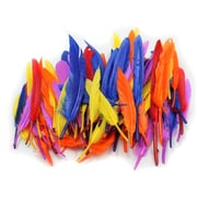 """Charles Leonard Creative Arts Duck Quill Feathers, Assorted Colours, 3"""" - 5"""", 8/Pack (CHL63080)"""