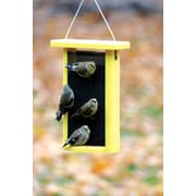 Birds Choice Magnet Mesh Recycled Nyjer/Thistle Feeder; 11'' H x 8'' W x 3'' D
