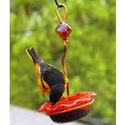 Birds Choice Single Cup Oriole Tray Bird Feeder