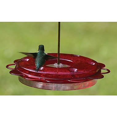 Birds Choice Hummerfest Hummingbird Feeder