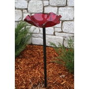 Birds Choice Acrylic Pole Mounted Birdbath; Red