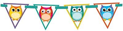 Carson-Dellosa Colorful Owls Bunting