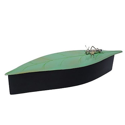 Bodhi Tree Collections Oblong Leaf Box w/ Cricket