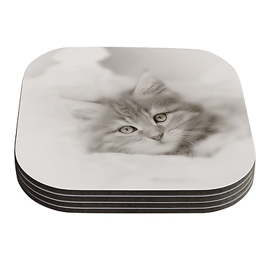KESS InHouse Main Coon Kitten by Monika Strigel Gray Cat Coaster (Set of 4)
