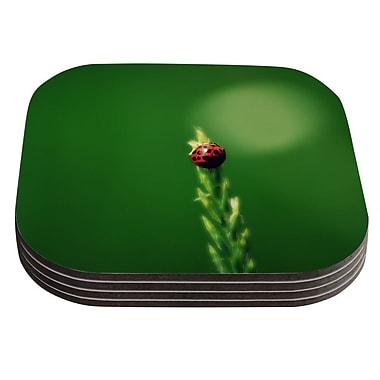 KESS InHouse Ladybug Hugs by Robin Dickinson Coaster (Set of 4)
