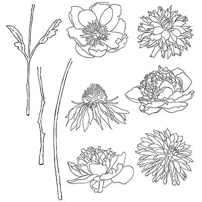 Stampers Anonymous Tim Holtz Cling Rubber Stamp Set, Flower Garden