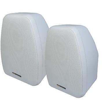 BIC America – Haut-parleur de 5 1/4 po à 2 voies Venturi Adatto pour l'intérieur/l'extérieur, 125 W, blanc (BICADDV52SIW)