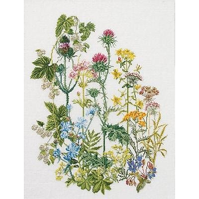 Thea Gouverneur TG424 Multicolor 13.8