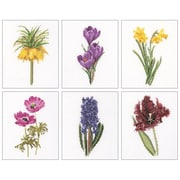 "Thea Gouverneur TG3083 Multicolor 8"" x 6.75"" Floral Studies 3 On Aida Counted Cross Stitch Kit, 6/Set"