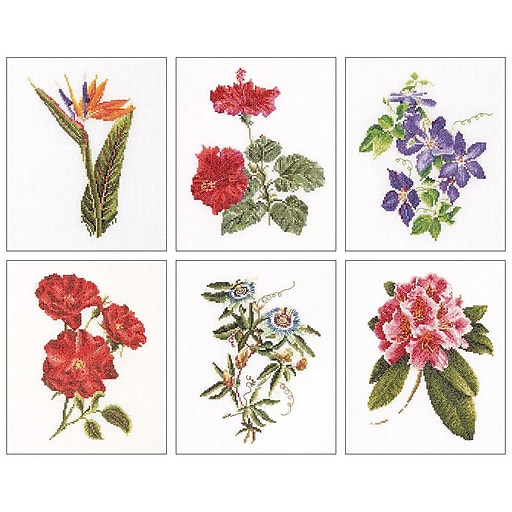 "Thea Gouverneur TG3081A Multicolor 8""x6.75"" Floral Studies 1 On Aida Counted Cross Stitch Kit, 6/Set"