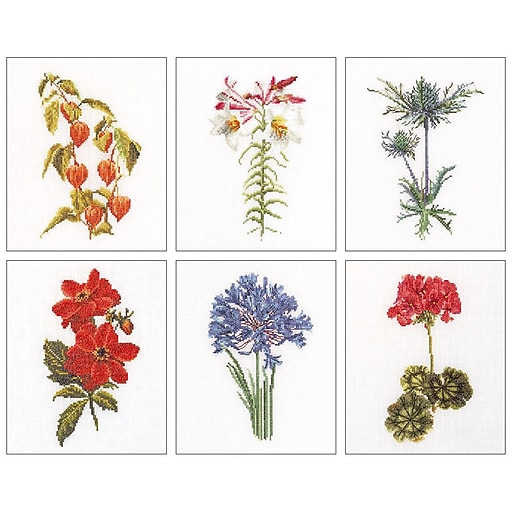 "Thea Gouverneur TG3082A Multicolor 8""x6.75"" Floral Studies 2 On Aida Counted Cross Stitch Kit, 6/Set"