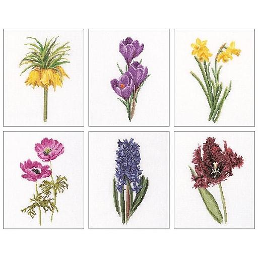 "Thea Gouverneur TG3083A Multicolor 8""x6.75"" Floral Studies 3 On Aida Counted Cross Stitch Kit, 6/Set"