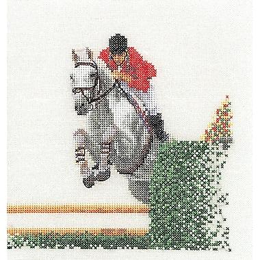 Thea Gouverneur TG3090A Multicolor 6.75