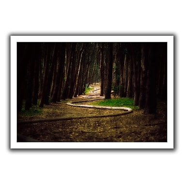 ArtWall Trees' by John Black Photographic Print on Rolled Canvas; 16'' H x 22'' W