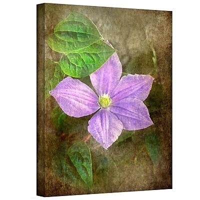 ArtWall Flowers in Focus II' by Antonio Raggio Photographic Print on Canvas; 18'' H x 14'' W