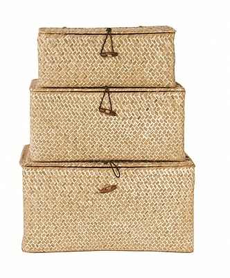 WaldImports 3 Piece Espresso Trunk Set; Whitewash