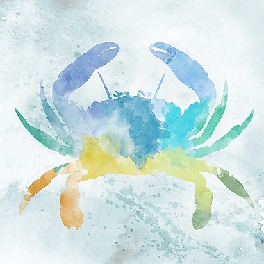 PTM Images Watery Crab Framed Painting Print on Wrapped Canvas