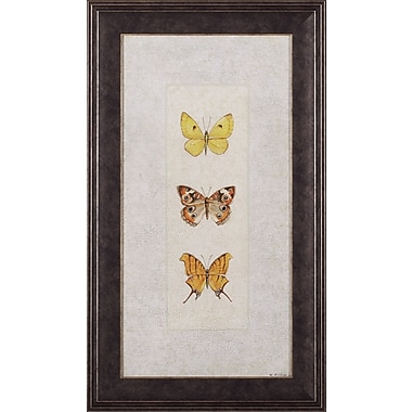 Art Effects Butterfly Trio I Wendy Russell Framed Graphic Art
