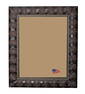 Rayne Frames Shane William Feathered Accent Picture Frame; 40'' x 30''
