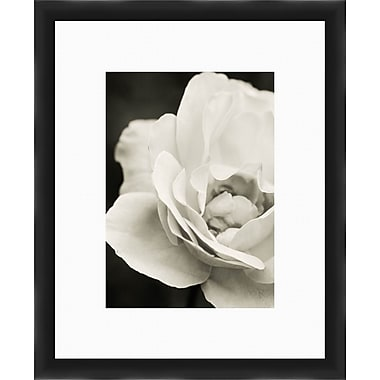 PTM Images Open Flower Gicl e Framed Photographic Print