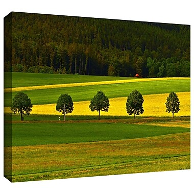 ArtWall '5026aaa1' by Lindsey Janich Photographic Print on Wrapped Canvas; 16'' H x 24'' W