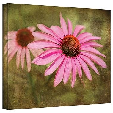 ArtWall Flowers in Focus V' by Antonio Raggio Photographic Print on Canvas; 12'' H x 18'' W