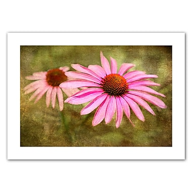 ArtWall Flowers In Focus V' by Antonio Raggio Photographic Print on Rolled Canvas; 16'' H x 22'' W