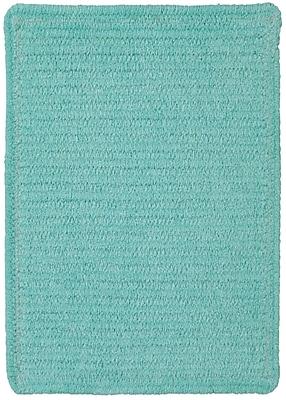Capel Custom Classics Island Blue Solid Rug; 3' x 5'