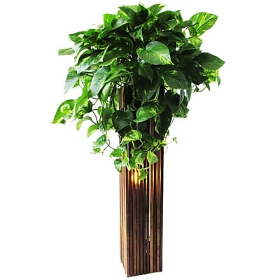 Bottles & Wood Plant Stand; 31'' H x 6.25'' W x 6.25'' W