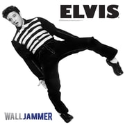 Advanced Graphics Elvis on Toes Wall Decal