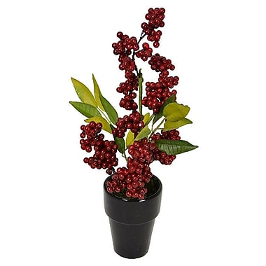 Fantastic Craft Berry Plant in Pot