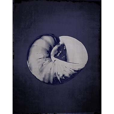 Graffitee Studios Snail Shell Graphic Art on Wrapped Canvas in Indigo