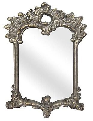 Legion Furniture Antique Gold Resin Mirror